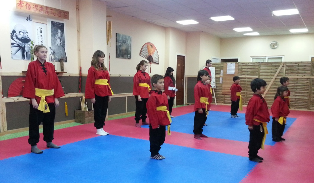Tai Chi Kung Fu Kids
